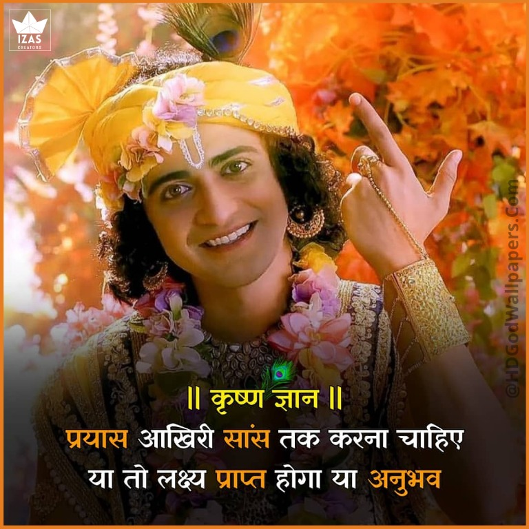 effort or experience krishna god quotes in hindi